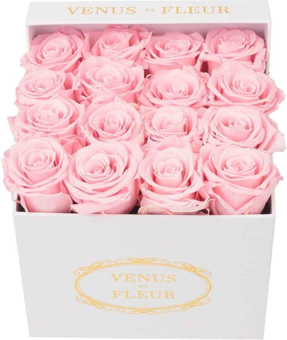 venus et fleur pink roses