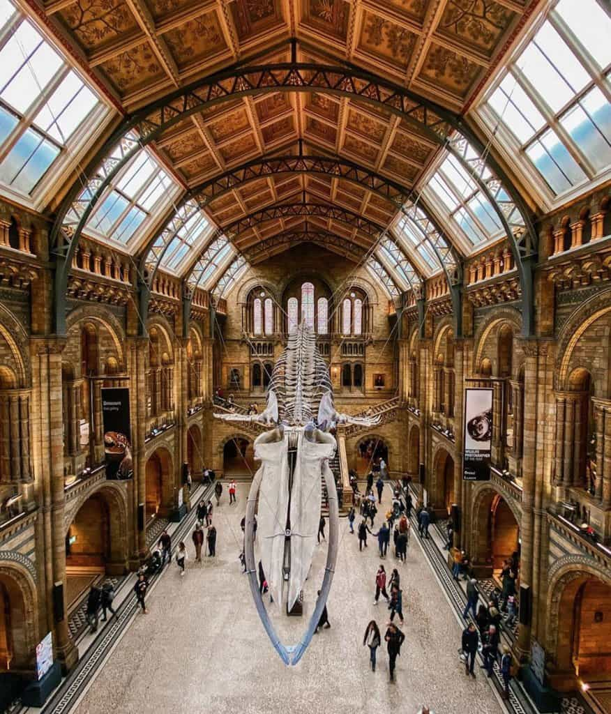 Natural History Museum most instagrammable places in london