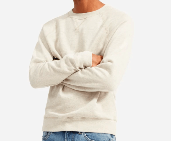 Lightweight Sweatshirt from Everlane