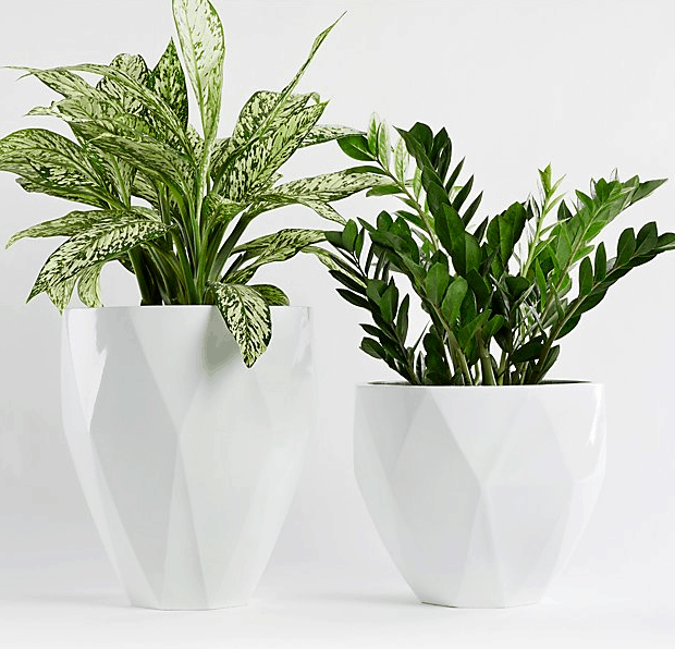 Crate and Barrel Diamond Planters