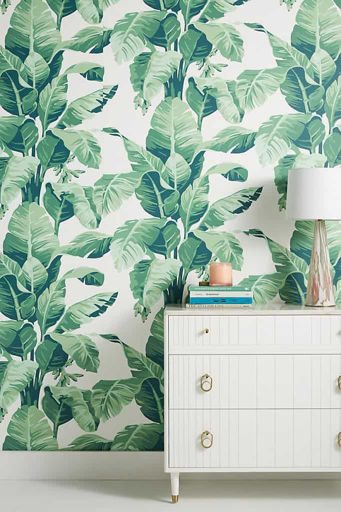 accent palm tree wall paper